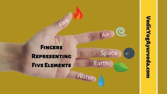 Finger Representing Five Elements