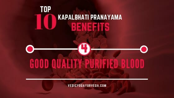 Top 10 Kapalbhati Pranayama Benefits- 4. Good Quality purified Blood