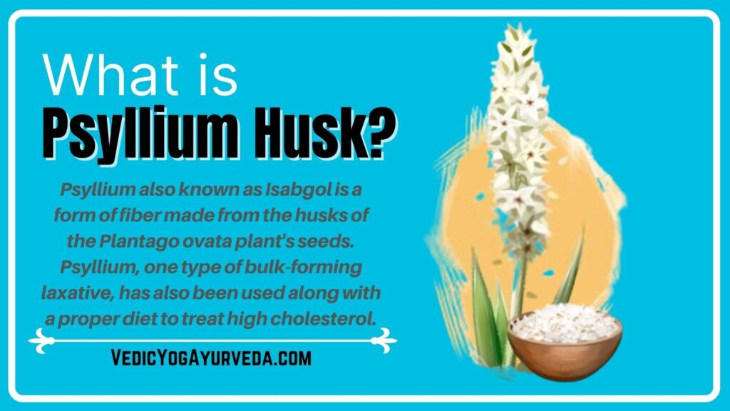 What is Psyllium Husk?